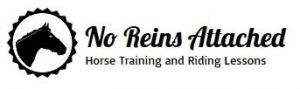 No Reins Attached Horse Training and Riding Lessons